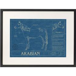 Framed Horse Blueprint