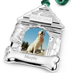 Dog House Photo Christmas Ornament