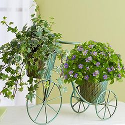 Spring Country Pathways Bicycle Planter