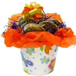 Gourmet Cookie Bouquet in Floral Pot
