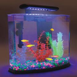 GloFish Shangri-La Aquarium