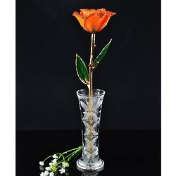 24K Gold Trimmed Preserved Orange Rose in Crystal Vase