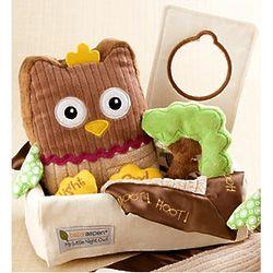 My Little Night Owl Baby Gift Basket Findgift Com