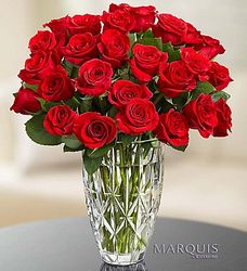 12 Red Roses in a Marquis Waterford Vase