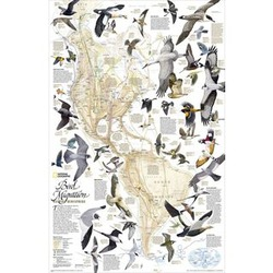 Bird Migration in the Americas Thematic Laminated Map