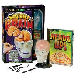 Amazing Squishy Brain Science Toy