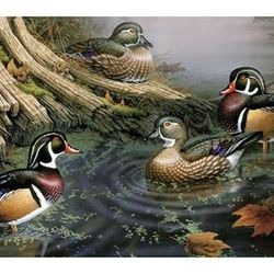 Wood Duck Puzzle