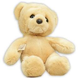Happy Birthday Woe Teddy Bear