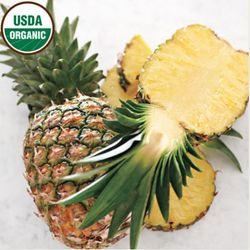 Organic Golden Pineapples