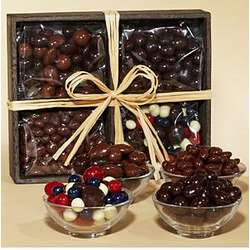 Deluxe Chocolate Covered Snack Sampler