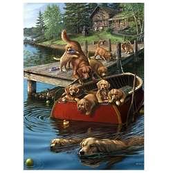 Dog Paddle Puzzle