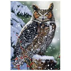 Silent Watch Owl Puzzle