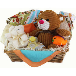 Brendall the Teddy Bear Gift Basket for Babies