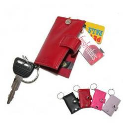 Snigglet Scan Card Organizer with Keychain