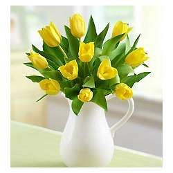 Yellow Tulips in Ceramic Pitcher