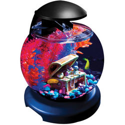 1.8 Gallon Waterfall Aquarium Kit