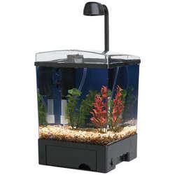 1.5 Gallon Cube LED Aquarium Kit
