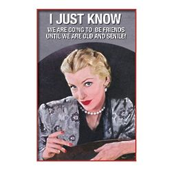 Old Friends New Friends Funny Greeting Card