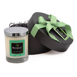 Organic Candle Holiday Gift Basket