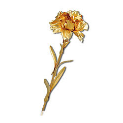 Carnation Flower Dipped in 24K Gold