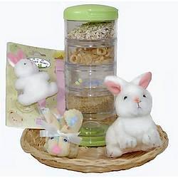 Baby Bunny Gift Set
