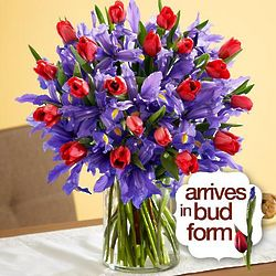 Deluxe Hugs and Kisses Flower Bouquet