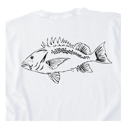 Rock Fish T-Shirt