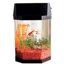 Top Fin® Aqua Scene Desktop Aquarium