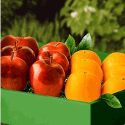 Apples & Oranges Gift Box