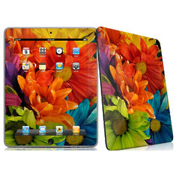 Colours Decal Skin for Apple iPad
