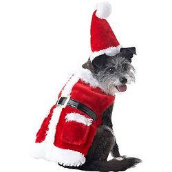 Holiday Santa Suit and Hat for Dogs