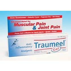 Traumeel Natural Pain Relief Gel