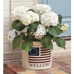 USA-Made Americana Welcome Stoneware Crock
