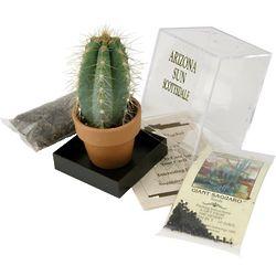 Grow Your Own Saguaro Cactus Kit