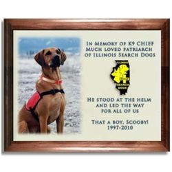 Full Color Photo Pet Memorial Plaque