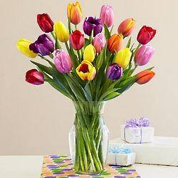 Bouquet of 20 Assorted Tulips