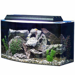 SeaClear 36 Gallon Bowfront Fish Tank and Hood
