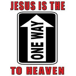Jesus Is The One Way T-Shirt