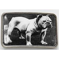 Bull Dog Belt Buckle