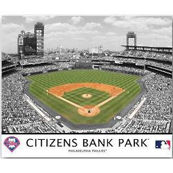 MLB Ballpark Canvas Wall Art