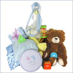 Stork Welcomes Baby Gift Basket