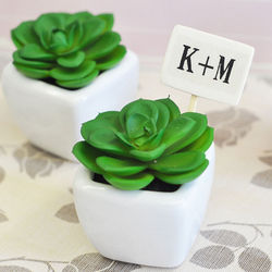 Personalized Mini Potted Succulents Party Favors