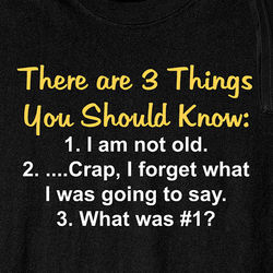 There Are 3 Things You Should Know I Am Not Old Shirt