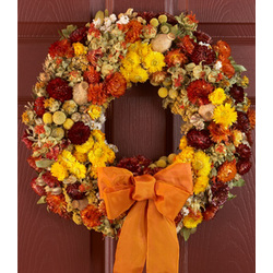 "18"" Radiant Preserved Fall Wreath"