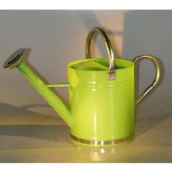 Pastel Green Zinc Watering Can