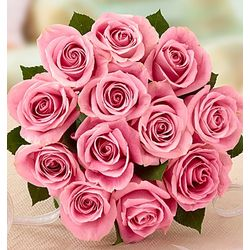 12 Pink Petal Roses