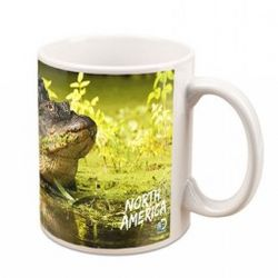 North America Alligator Mug