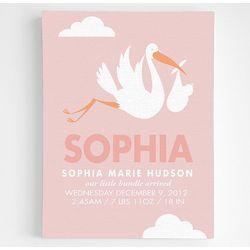 Baby Girl's Stork Announcement Framed Art
