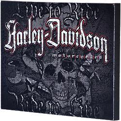Harley-Davidson Rid to Live Skull Canvas Print