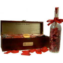 Deluxe Knights of the Heart Message Bottle and Chest